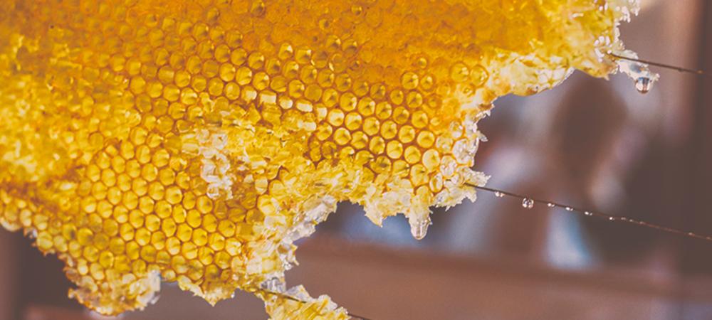 mieles-y-polen